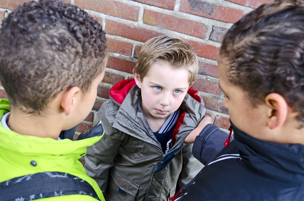 WHAT TO DO IF YOUR CHILD IS BEING BULLIED